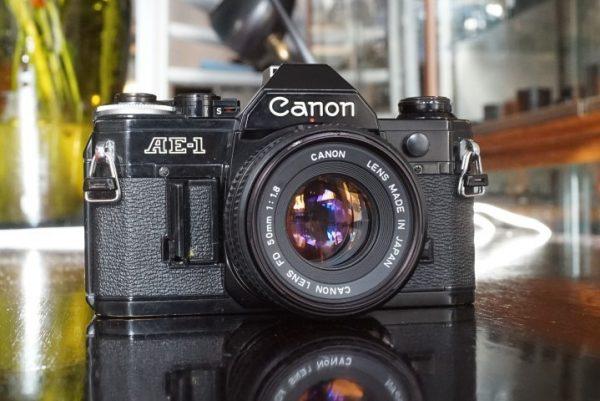Canon AE-1 Program + Canon FD 1.4 / 50mm –