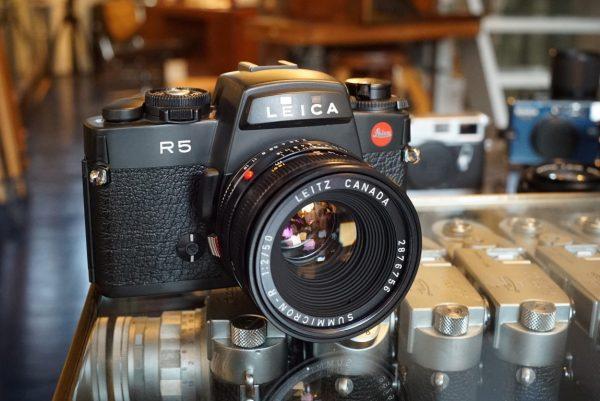 Leica R5 + Summicron-R 50mm f/2 R-Only