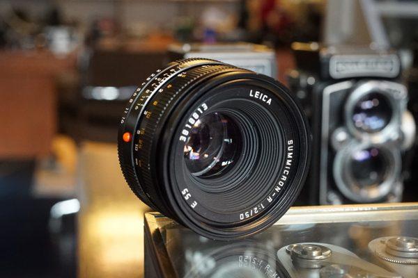 Leica Summicron-R 1:2 / 50mm E55, Rom
