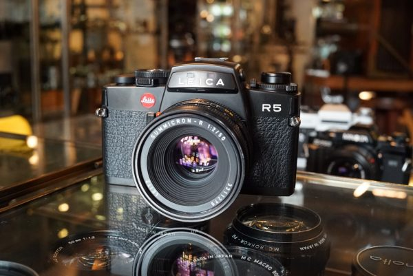 Leica R5 + Summicron-R 1:2 / 50mm R-Only, Boxed body