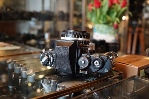 Nikon F3 + Nikon E 50mm f/1.8