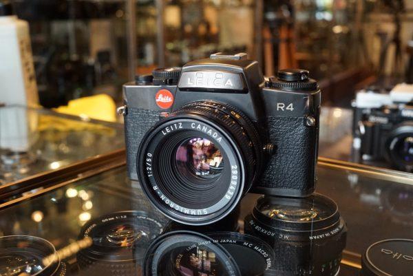 Leica R4 + Summicron-R 50mm f/2 R-Only